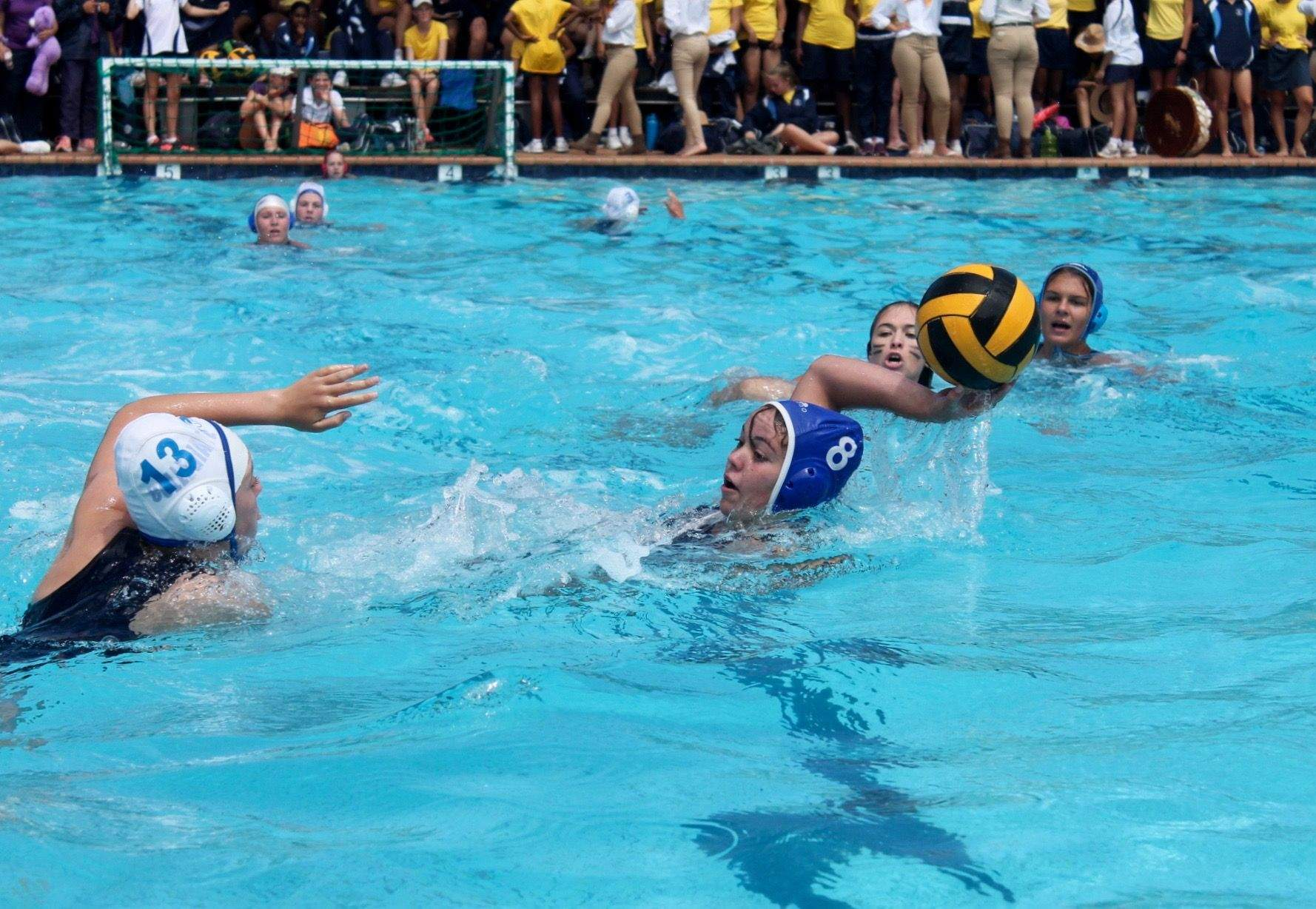 Sport - Water Polo